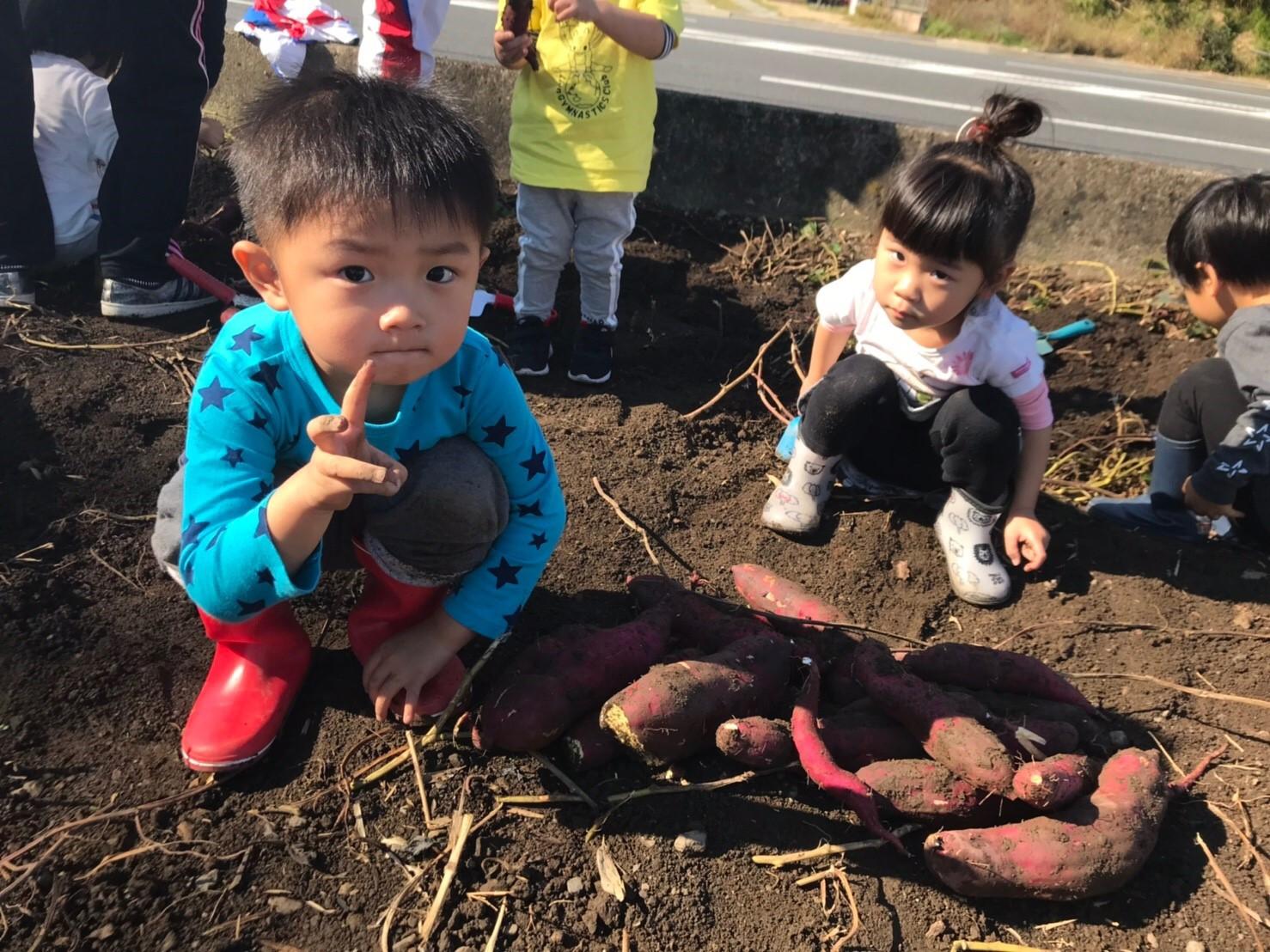 お芋掘り3期生画像6