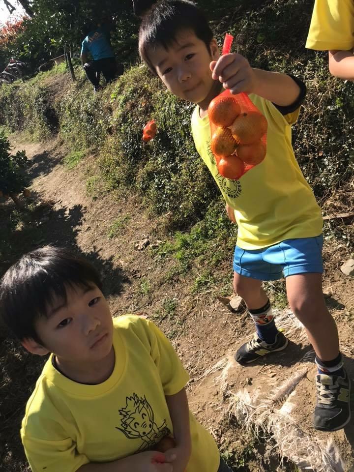 秋の味覚狩り遠足2018画像41