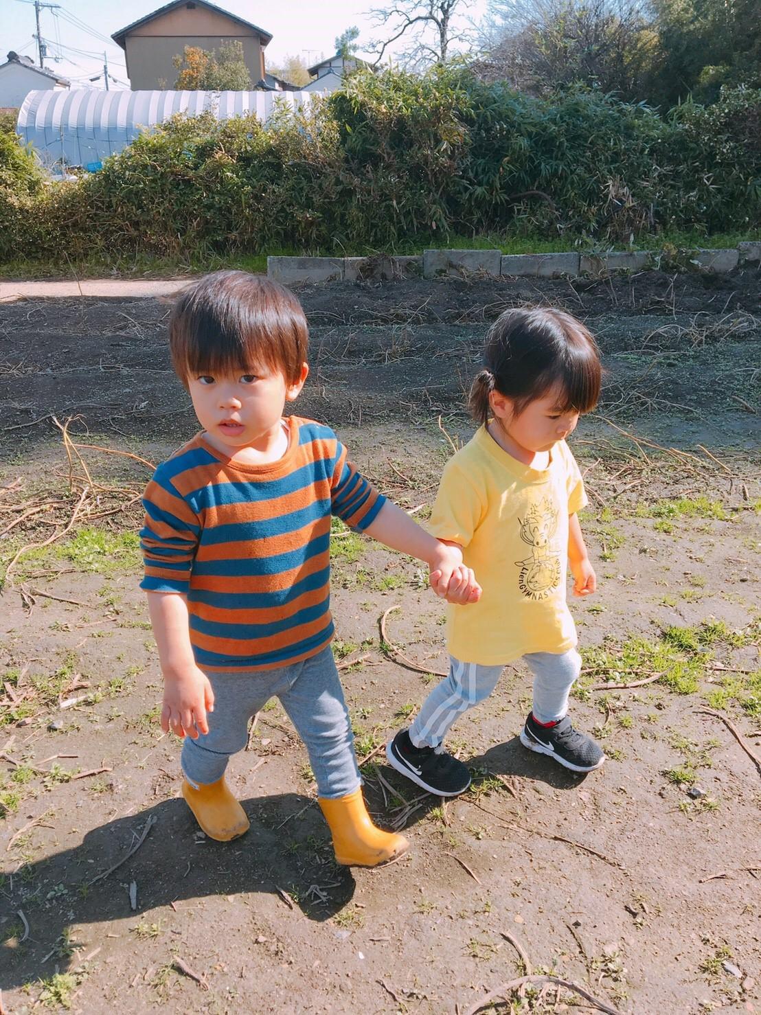 お芋掘り3期生画像14