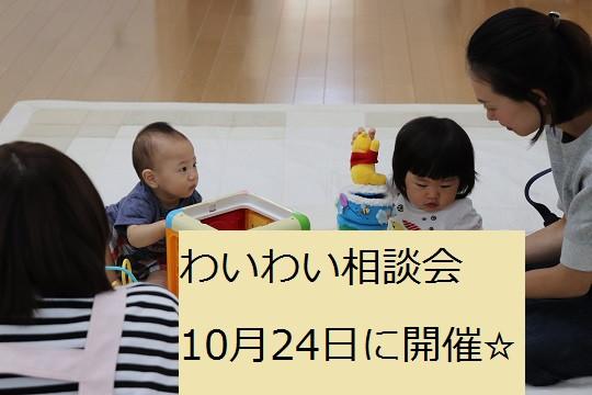 10月24日わいわい相談会開催☆
