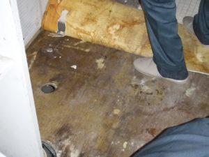 横浜市旭区 洗面所床張り替え工事画像1