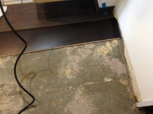 神奈川県茅ケ崎市で床(フローリング)張替工事を実施画像5