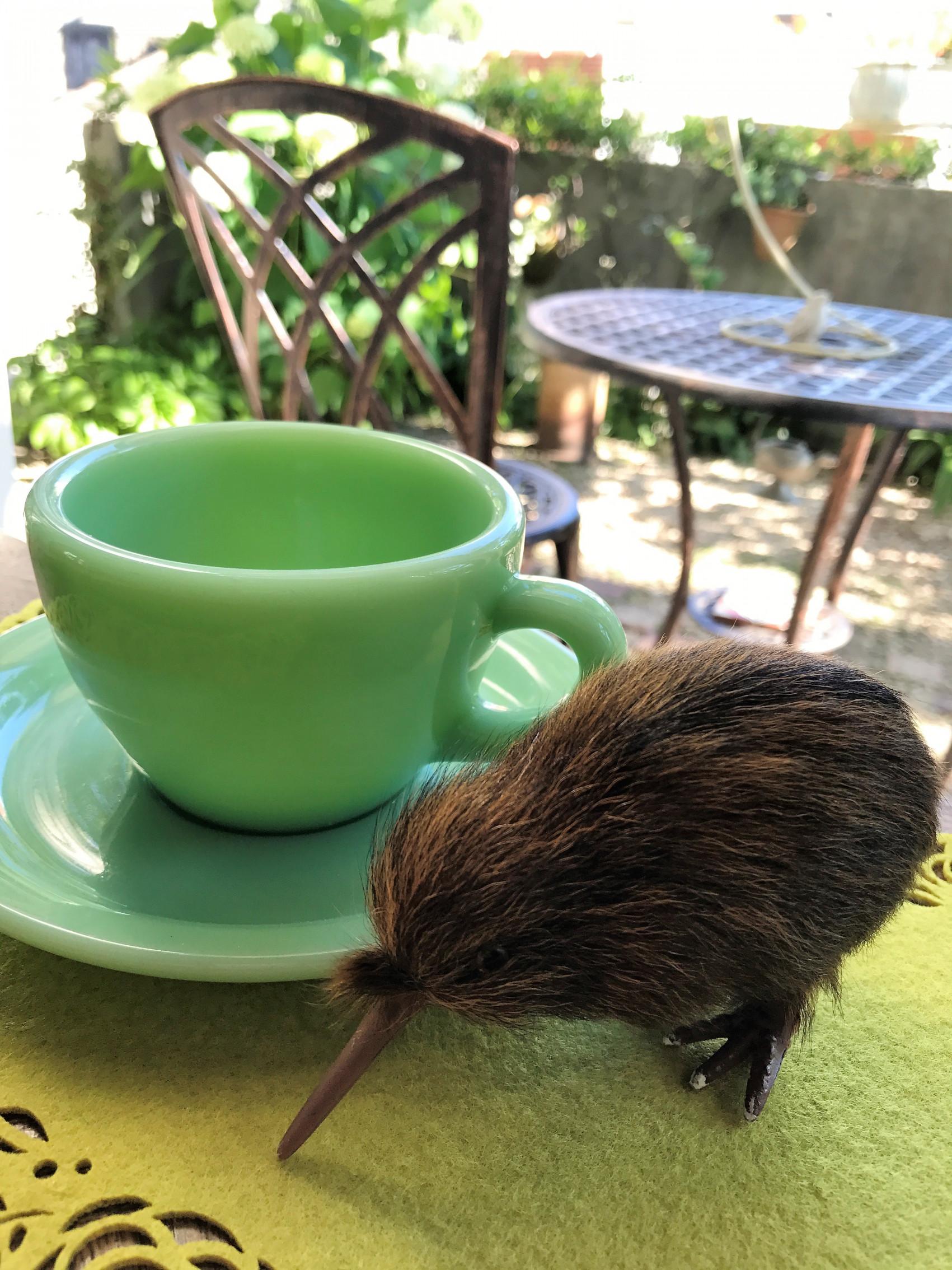 AUS.&NZ~思い出のカフェタイム~