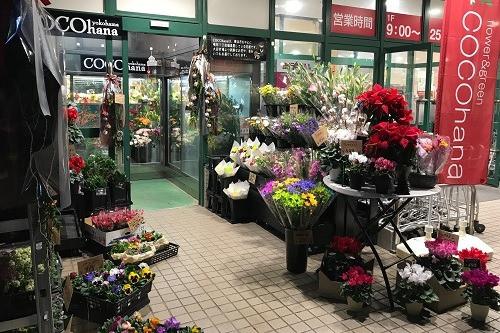 COCOhana 大倉山店