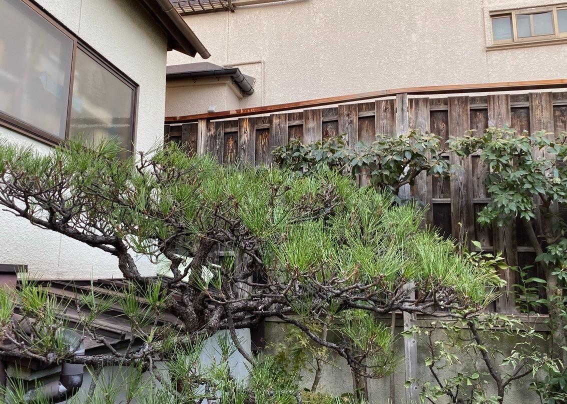 寝屋川市 剪定の施工イメージ画像01
