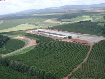 ブラジル モンテアレグレ農園