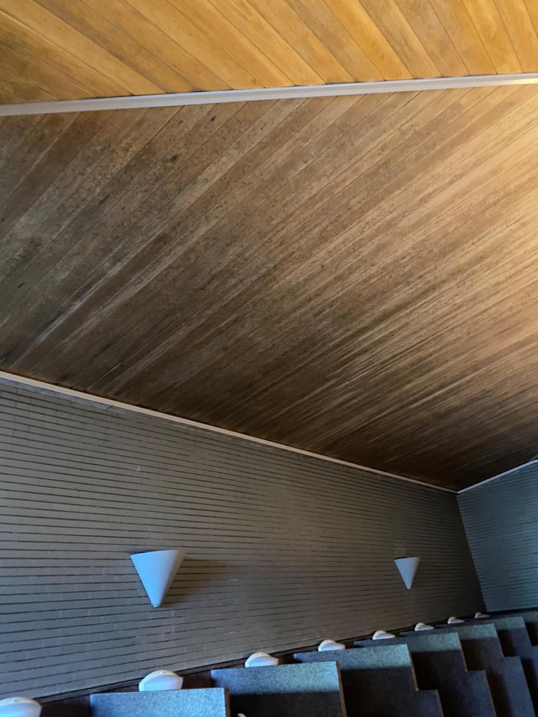 白木洗い 大浴場洗い場天井編