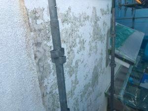 生駒市でスキン吹付け塗装画像3