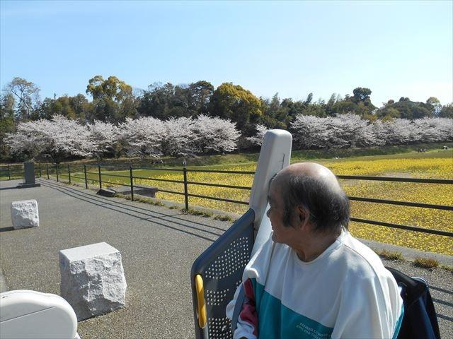 福岡市博多区の老人ホーム・デイサービス「さくらんぼ」|介護士求人募集中