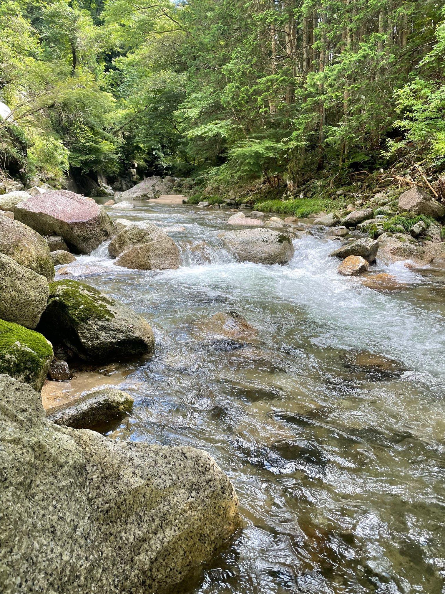 オススメ!近くの串原の川