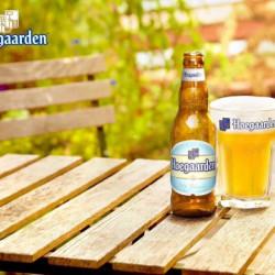 紹介 世界のビール 〈ヒューガルデン〉    About beer from Bergium  (Hoegaarden)