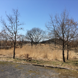 飯田高原もようやく春です