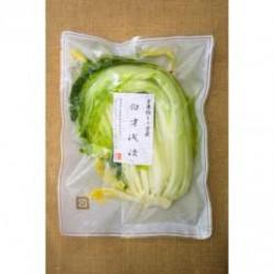 【無添加】 白菜浅漬