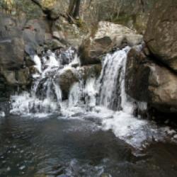 三田に氷瀑出現。尼ン滝が凍りました。画像
