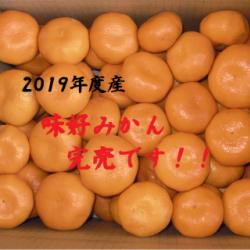 2019年度産味好みかん完売いたしました!画像