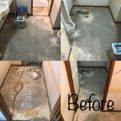 某施設トイレ改修工事画像