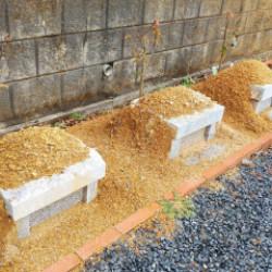 最近お問い合わせが多い樹木葬です。