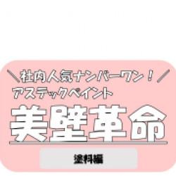 超低汚染リファインシリーズ「美壁革命」【塗料編】