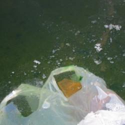 汚水処理の仕組み画像
